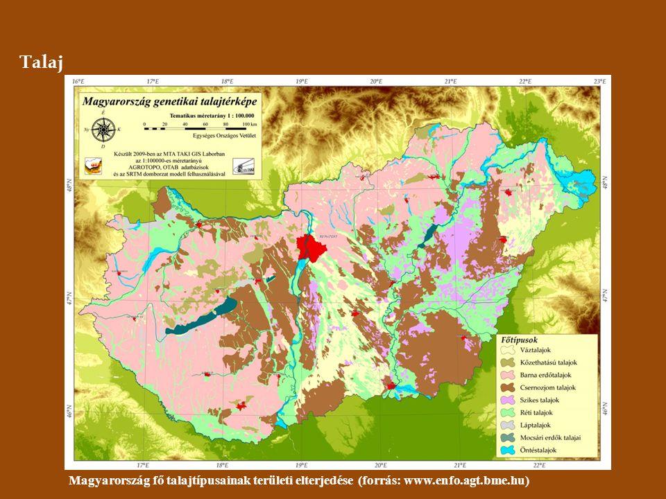 Talaj Magyarország fő talajtípusainak területi elterjedése (forrás: www.enfo.agt.bme.hu)