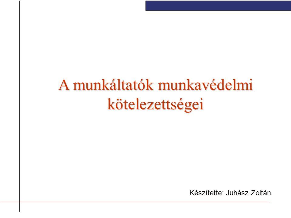 A munkáltatók munkavédelmi kötelezettségei Készítette: Juhász Zoltán