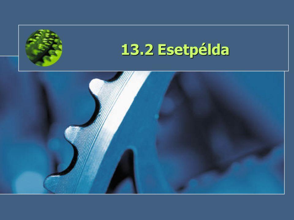 13.2 Esetpélda