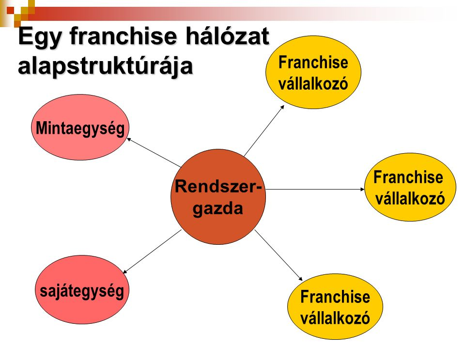Egy franchise hálózat alapstruktúrája Rendszer- gazda Mintaegység sajátegység Franchise vállalkozó Franchise vállalkozó Franchise vállalkozó