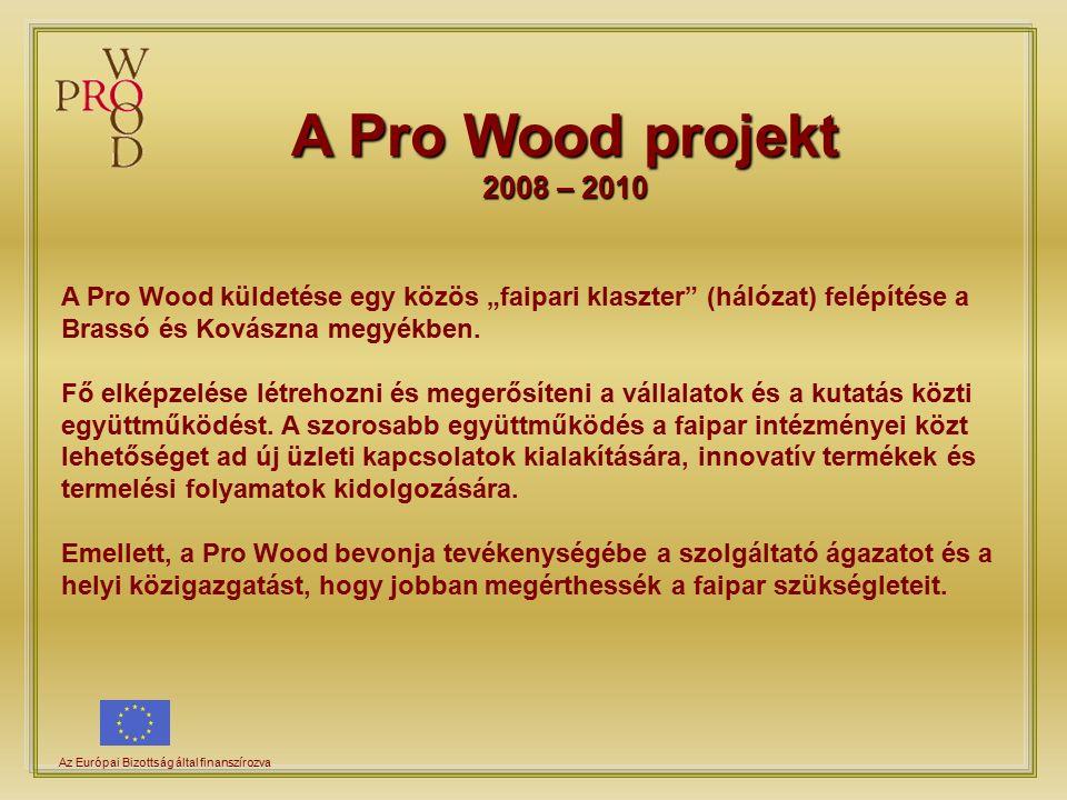 """A Pro Wood projekt 2008 – 2010 Az Európai Bizottság által finanszírozva A Pro Wood küldetése egy közös """"faipari klaszter (hálózat) felépítése a Brassó és Kovászna megyékben."""
