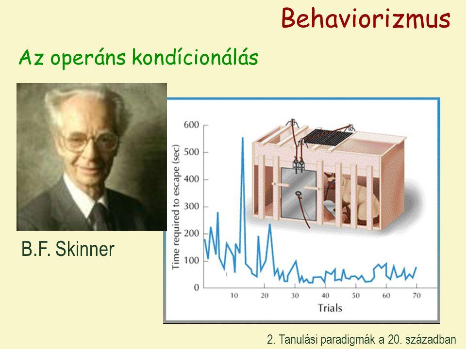 Az operáns kondícionálás B.F. Skinner Behaviorizmus 2. Tanulási paradigmák a 20. században