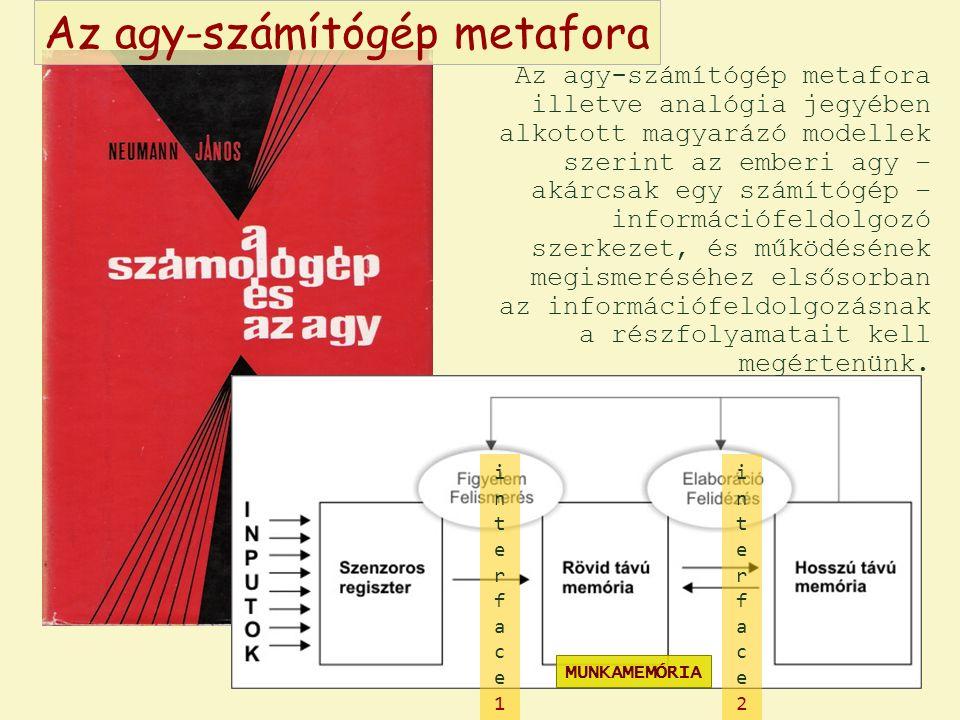 Az agy-számítógép metafora illetve analógia jegyében alkotott magyarázó modellek szerint az emberi agy – akárcsak egy számítógép – információfeldolgoz