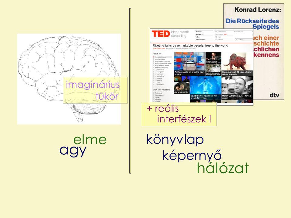 elme hálózat agy képernyő + reális interfészek ! imaginárius tükör könyvlap