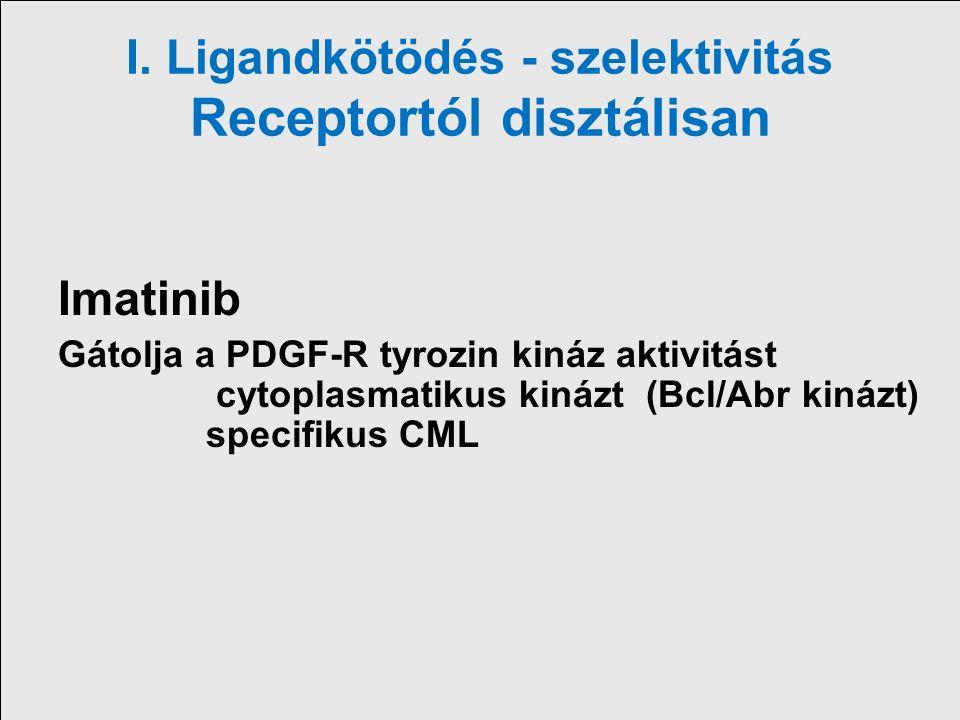 I. Ligandkötödés - szelektivitás Receptortól disztálisan Imatinib Gátolja a PDGF-R tyrozin kináz aktivitást cytoplasmatikus kinázt (Bcl/Abr kinázt) sp