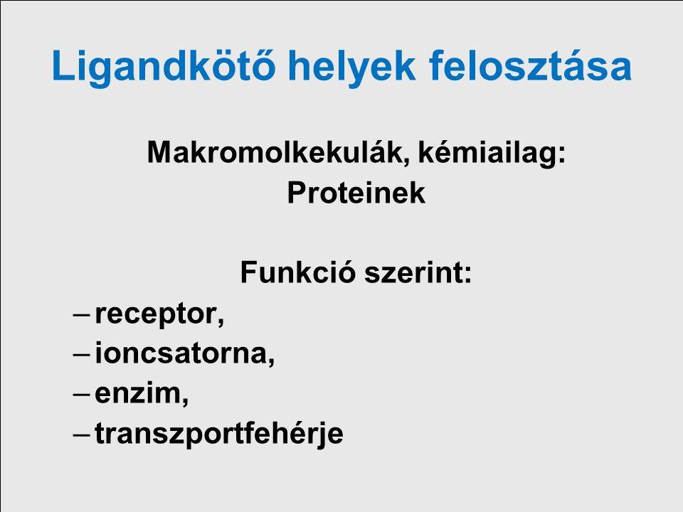 Gyógyszerek kötődése –Receptor Kolinerg, adrenerg, hisztamin, szerotonin, opiat, ösztrogén stb –Ioncsatorna Fesztültség függő nátrium, kálcium csatorna, vese epiteliális Na csatorna, ATP-szenzitív K csatorna, GABA-függő klorid csatorna –Metabolikus, regulatorikus enzim dihidrofolat reduktáz, acetilkolinészteráz, COX, ACE, foszfodiészteráz (V, MAO) –Transzportfehérjék, carrierek Na- K ATP-áz, Na/K/ 2Cl, NA transzporter, Na/H transzporter –Strukturális protein tubulin –Sejtek egyéb komponenseinek speciális kötőképessége nukleinsavak