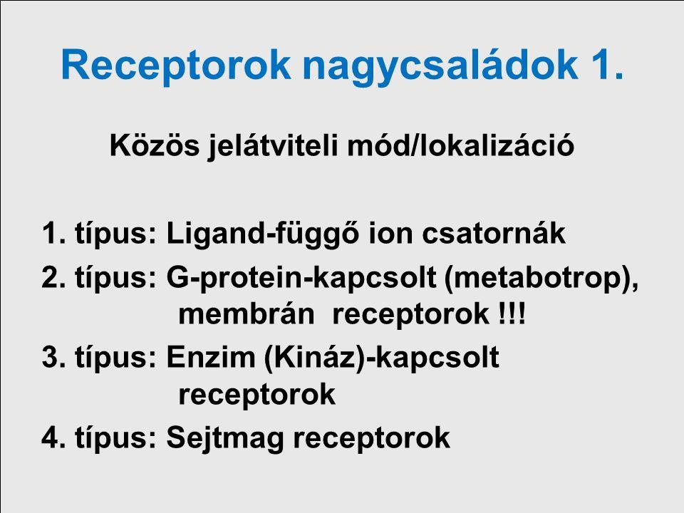 Receptor nagycsaládok miliszekundummásodperc óra óra pl.: NikotinosMuscarinos Cytokin, Szteroid ACh receptor ACh receptor receptorok receptor