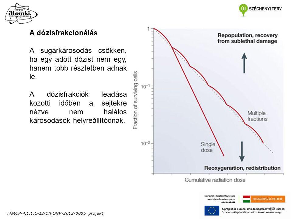 TÁMOP-4.1.1.C-12/1/KONV-2012-0005 projekt 27 A dózisfrakcionálás A sugárkárosodás csökken, ha egy adott dózist nem egy, hanem több részletben adnak le.