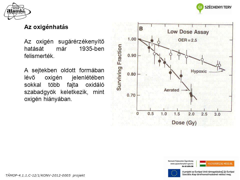 TÁMOP-4.1.1.C-12/1/KONV-2012-0005 projekt 29 Az oxigénhatás Az oxigén sugárérzékenyítő hatását már 1935-ben felismerték.