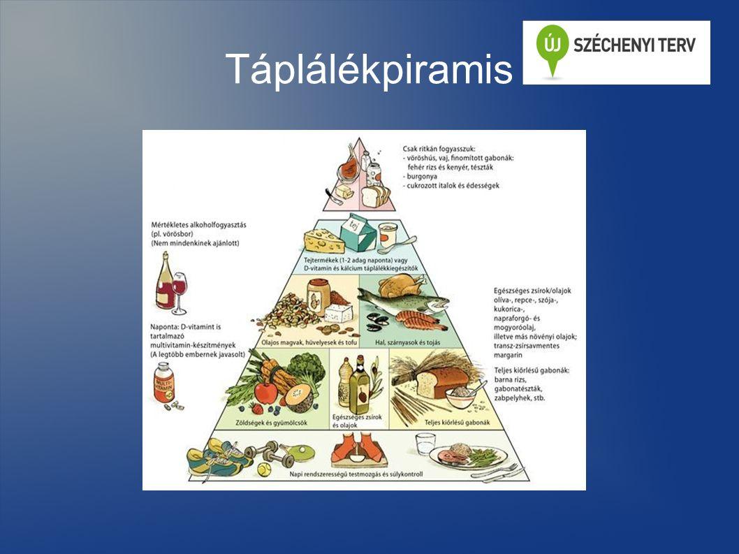 Az egészséges táplálkozás A szervezet működésének alapja a táplálkozás.