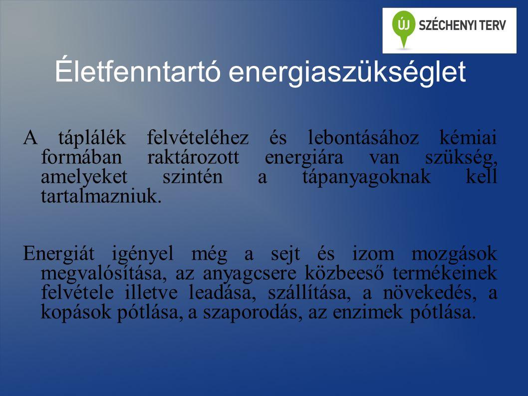 Életfenntartó energiaszükséglet A táplálék felvételéhez és lebontásához kémiai formában raktározott energiára van szükség, amelyeket szintén a tápanyagoknak kell tartalmazniuk.
