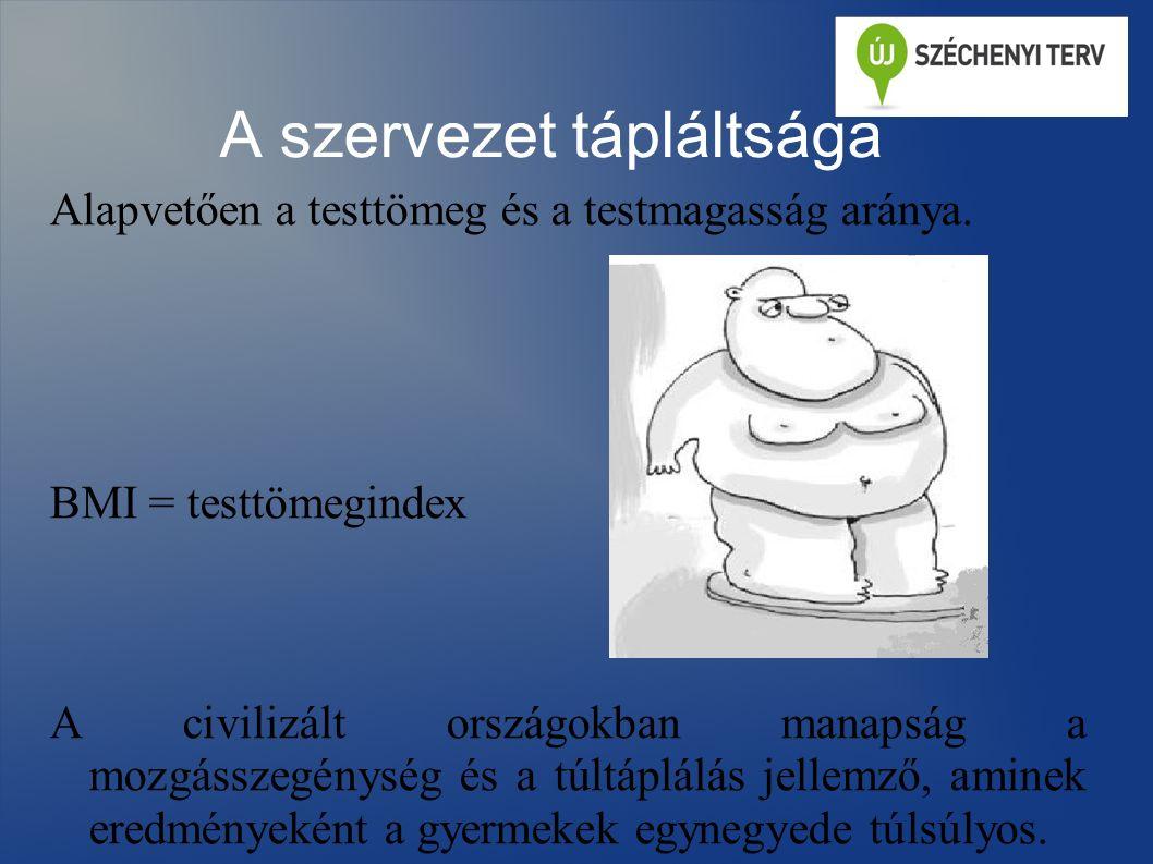 A túlzott energiabevitel következményei Elhízás – testzsír %-os aránya nő.