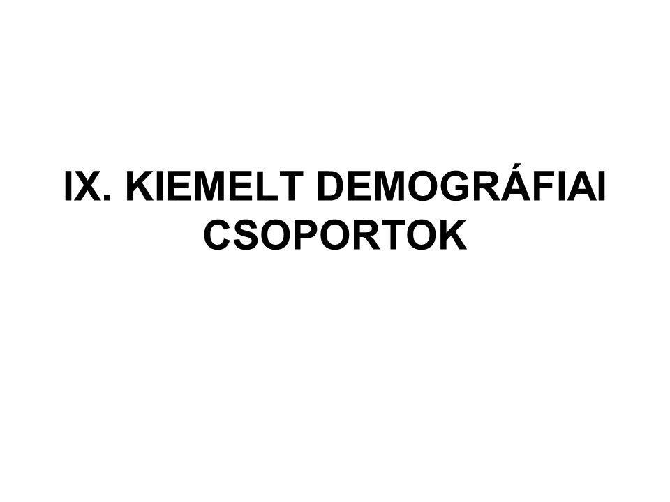 IX. KIEMELT DEMOGRÁFIAI CSOPORTOK
