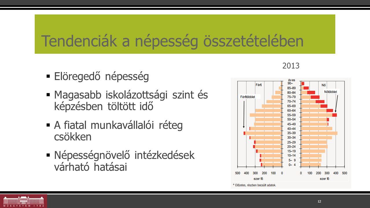 Tendenciák a népesség összetételében  Elöregedő népesség  Magasabb iskolázottsági szint és képzésben töltött idő  A fiatal munkavállalói réteg csökken  Népességnövelő intézkedések várható hatásai 12 2013