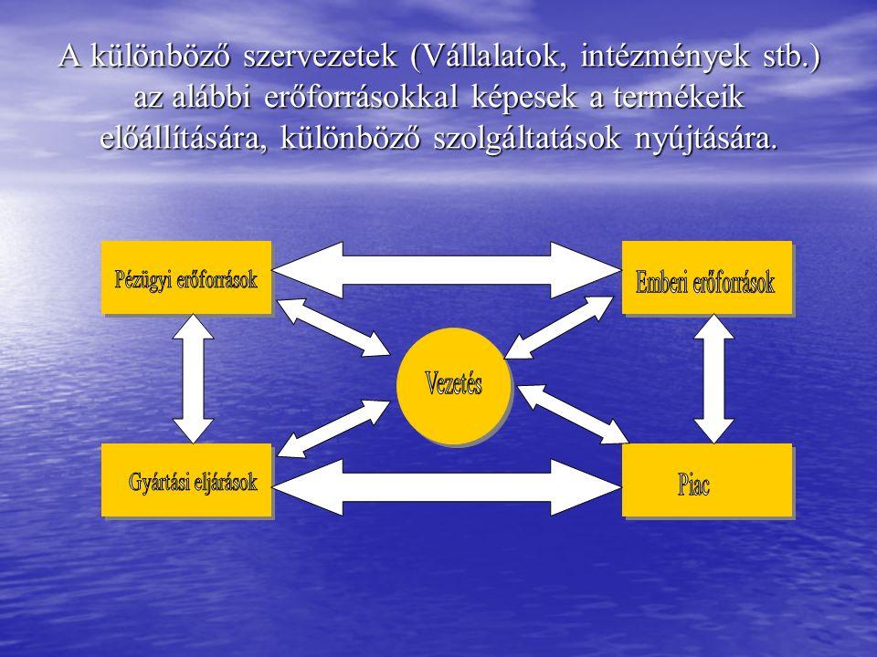 A különböző szervezetek (Vállalatok, intézmények stb.) az alábbi erőforrásokkal képesek a termékeik előállítására, különböző szolgáltatások nyújtására.