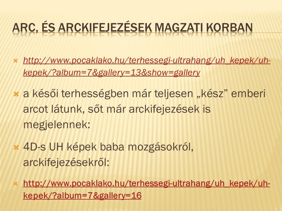  http://www.pocaklako.hu/terhessegi-ultrahang/uh_kepek/uh- kepek/?album=7&gallery=13&show=gallery http://www.pocaklako.hu/terhessegi-ultrahang/uh_kep