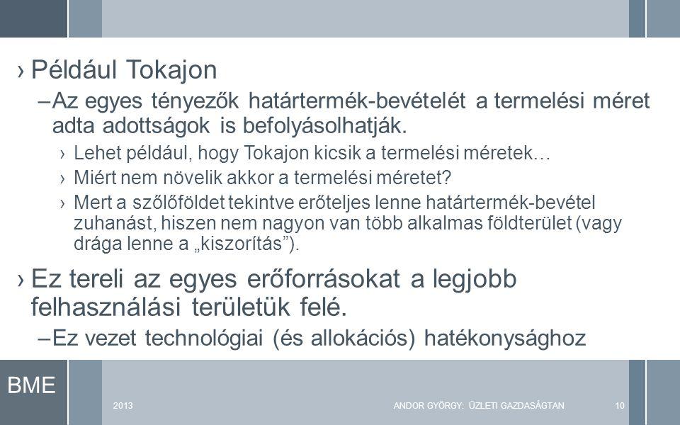 BME 2013ANDOR GYÖRGY: ÜZLETI GAZDASÁGTAN10 ›Például Tokajon –Az egyes tényezők határtermék-bevételét a termelési méret adta adottságok is befolyásolhatják.