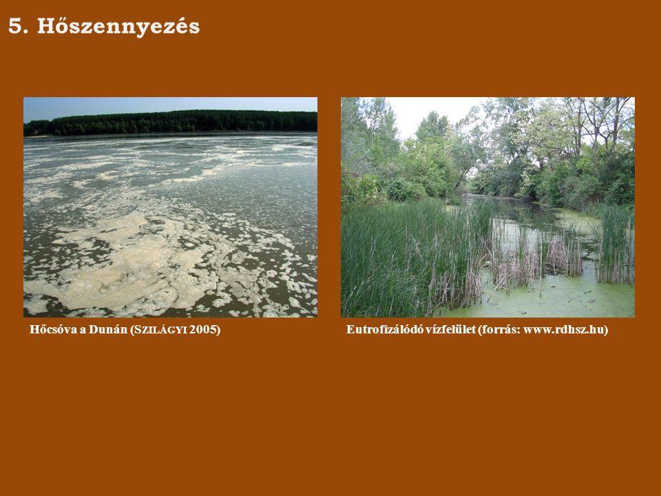 5. Hőszennyezés Hőcsóva a Dunán (S ZILÁGYI 2005)Eutrofizálódó vízfelület (forrás: www.rdhsz.hu)