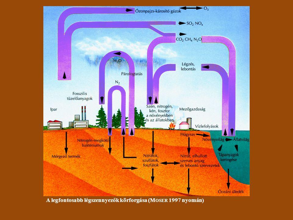 A savas eső kialakulásának menete (forrás: www.enfo.agt.bme.hu)
