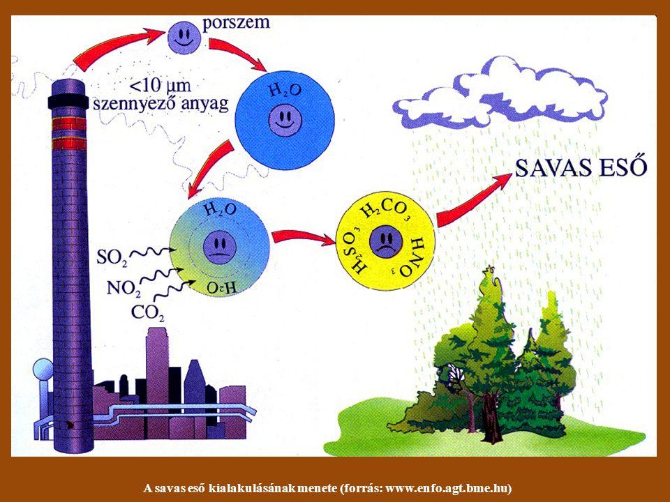Nyári szmog Budapesten (forrás: www.criticalmass.hu) Savas eső miatt elhalt fenyőfák a Szudétákban