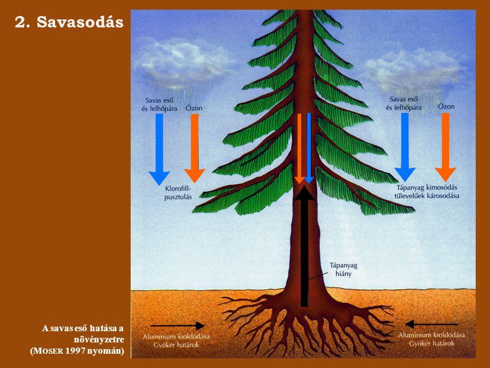 3. Üvegházhatás Az üvegházhatás folyamata