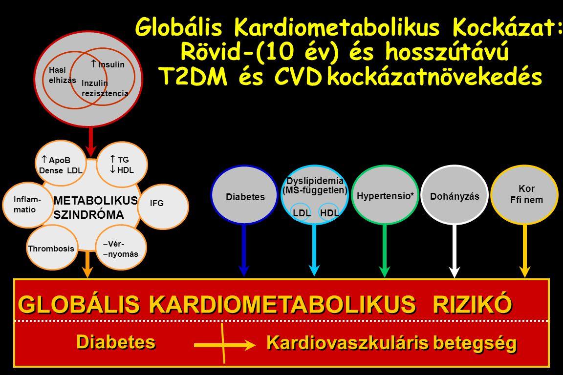 Hasi elhízás Inzulin rezisztencia  Insulin METABOLIKUS SZINDRÓMA Thrombosis Inflam- matio  ApoB Dense LDL  TG  HDL  Vér-  nyomás GLOBÁLIS KARDIO