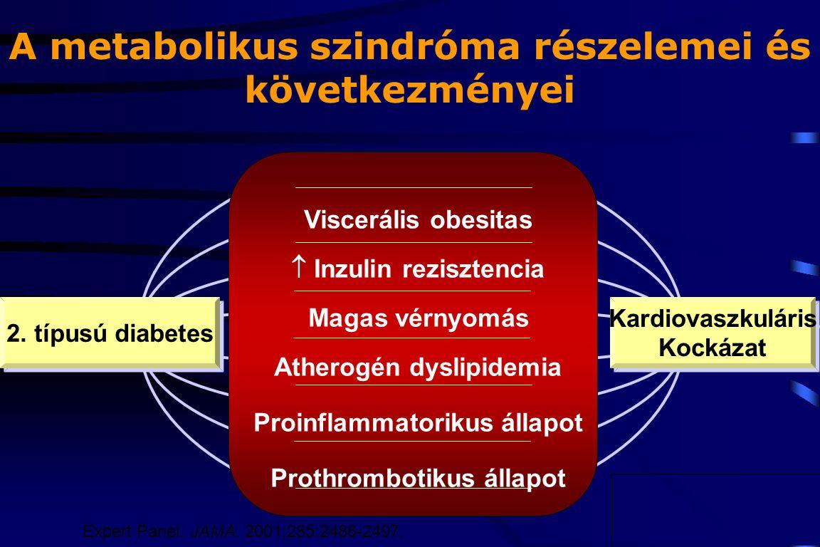 A metabolikus szindróma részelemei és következményei Viscerális obesitas  Inzulin rezisztencia Magas vérnyomás Atherogén dyslipidemia Proinflammatori