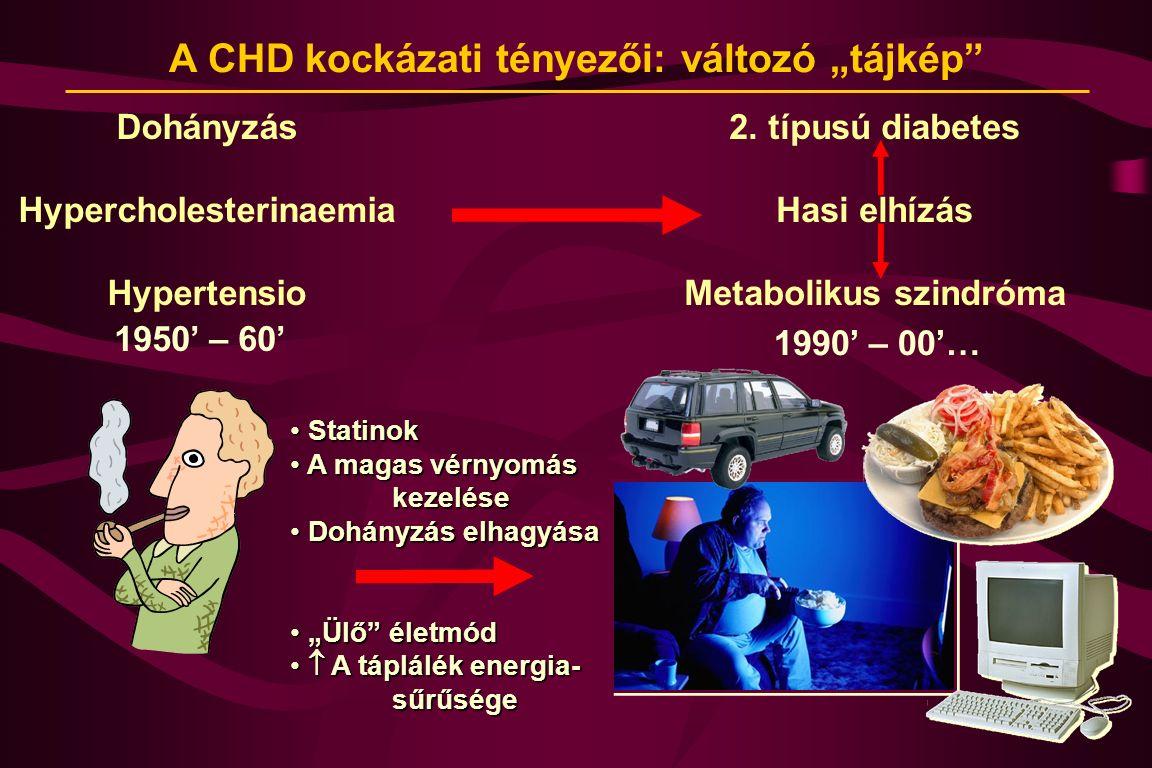 """A CHD kockázati tényezői: változó """"tájkép"""" Dohányzás Hypercholesterinaemia Hypertensio 2. típusú diabetes Hasi elhízás Metabolikus szindróma 1950' – 6"""