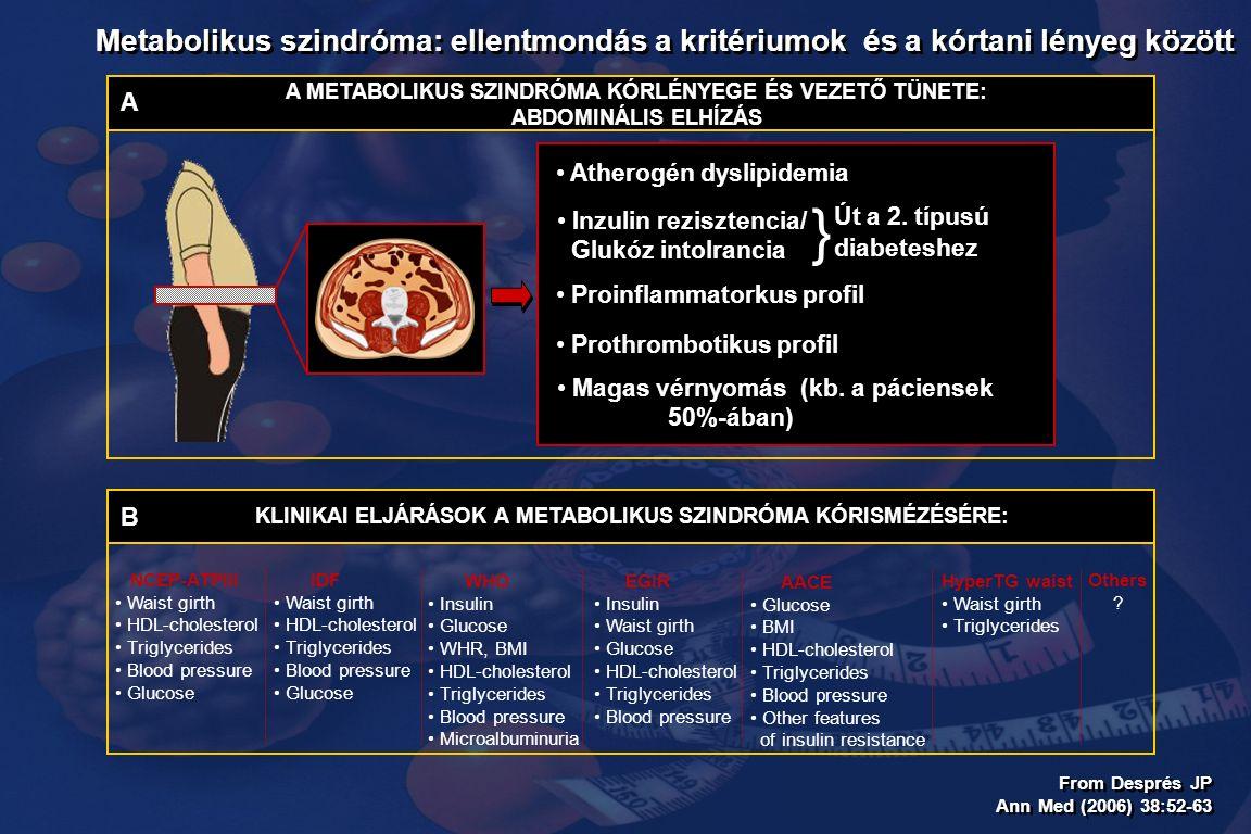From Després JP Ann Med (2006) 38:52-63 From Després JP Ann Med (2006) 38:52-63 Metabolikus szindróma: ellentmondás a kritériumok és a kórtani lényeg között KLINIKAI ELJÁRÁSOK A METABOLIKUS SZINDRÓMA KÓRISMÉZÉSÉRE: NCEP-ATPIII Waist girth HDL-cholesterol Triglycerides Blood pressure Glucose AACE Glucose BMI HDL-cholesterol Triglycerides Blood pressure Other features of insulin resistance EGIR Insulin Waist girth Glucose HDL-cholesterol Triglycerides Blood pressure IDF Waist girth HDL-cholesterol Triglycerides Blood pressure Glucose HyperTG waist Waist girth Triglycerides Others .