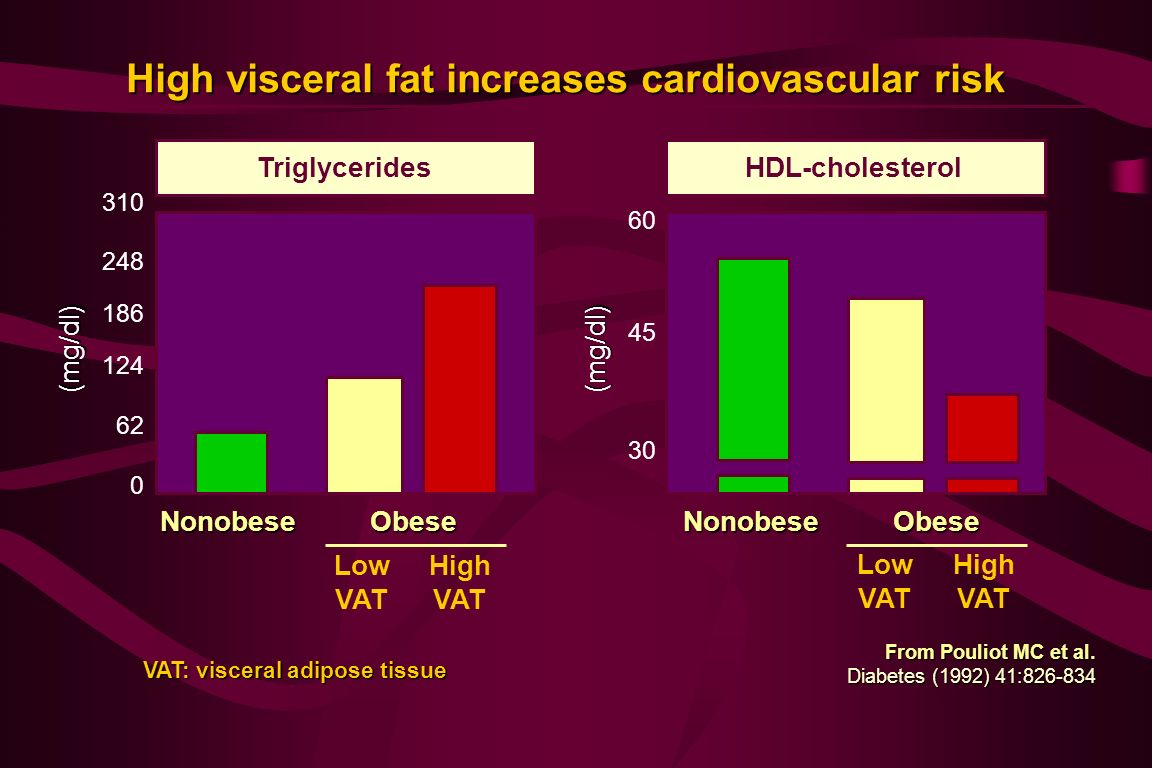 High visceral fat increases cardiovascular risk From Pouliot MC et al.