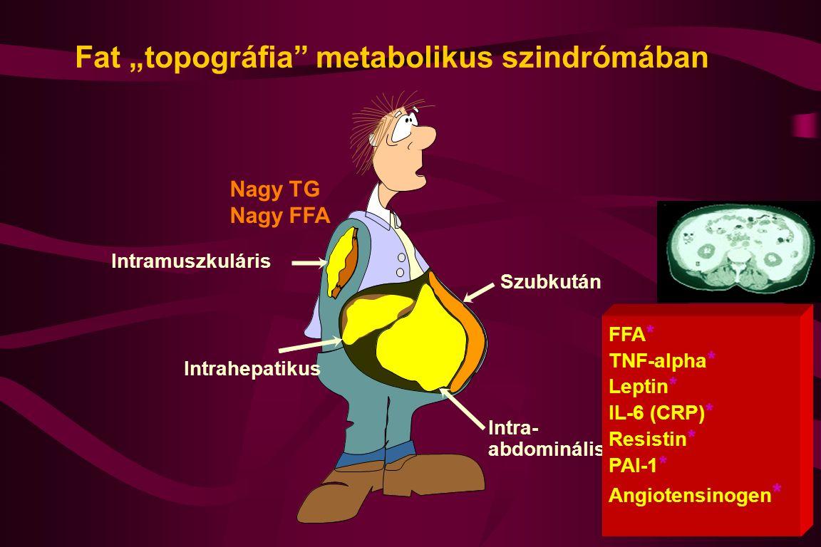 """Fat """"topográfia metabolikus szindrómában Nagy TG Nagy FFA Intramuszkuláris Intrahepatikus Szubkután Intra- abdominális FFA * TNF-alpha * Leptin * IL-6 (CRP) * Resistin * PAI-1 * Angiotensinogen *"""