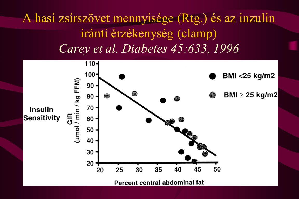 A hasi zsírszövet mennyisége (Rtg.) és az inzulin iránti érzékenység (clamp) Carey et al. Diabetes 45:633, 1996
