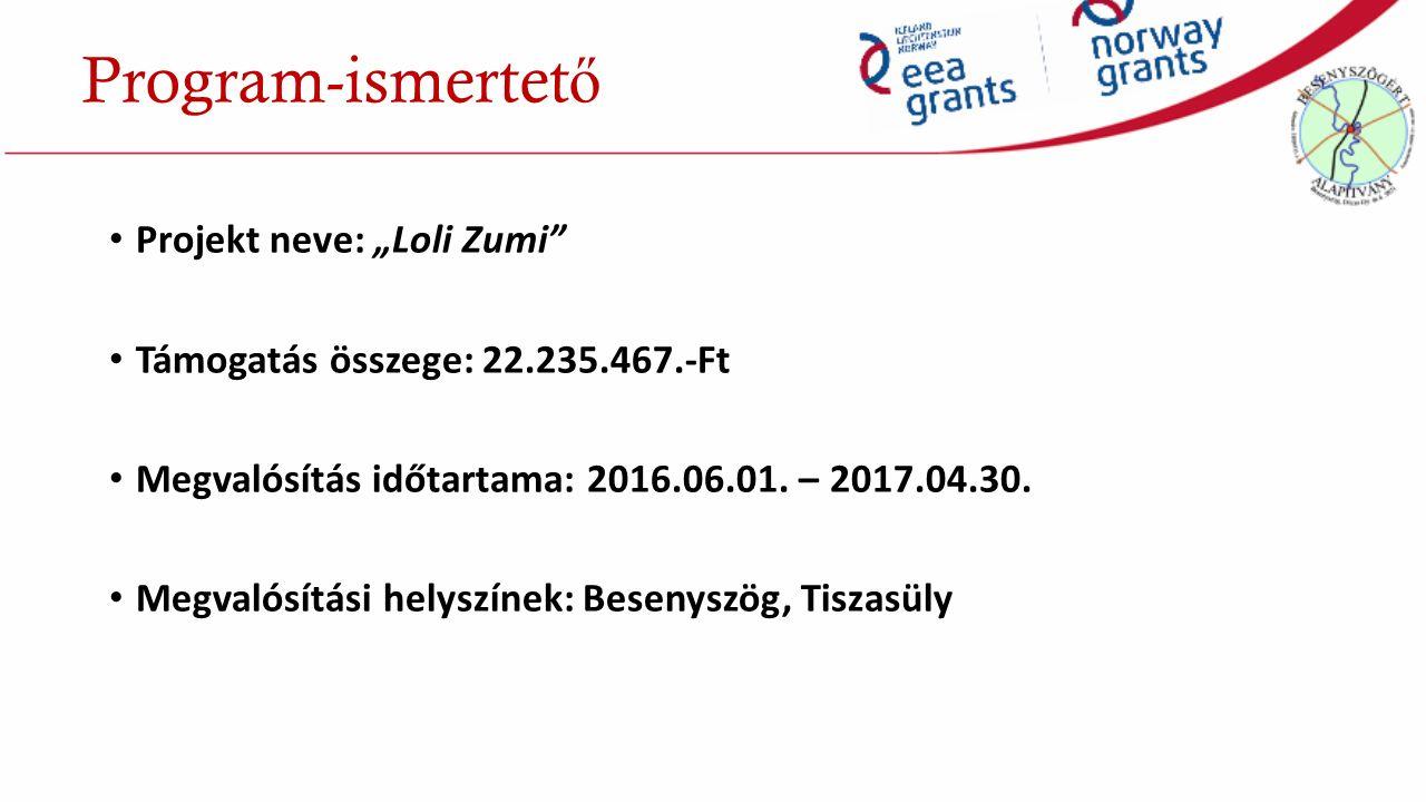 """Program-ismertet ő Projekt neve: """"Loli Zumi Támogatás összege: 22.235.467.-Ft Megvalósítás időtartama: 2016.06.01."""
