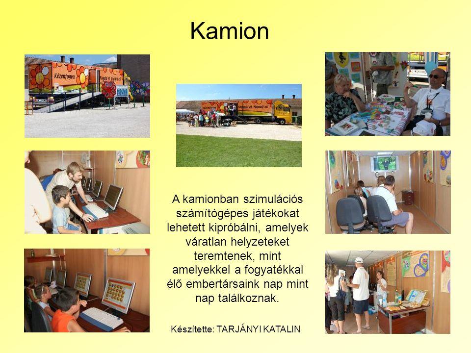 2008 Július 13.Készítette: TARJÁNYI KATALIN9 Kamion A kamionban szimulációs számítógépes játékokat lehetett kipróbálni, amelyek váratlan helyzeteket t