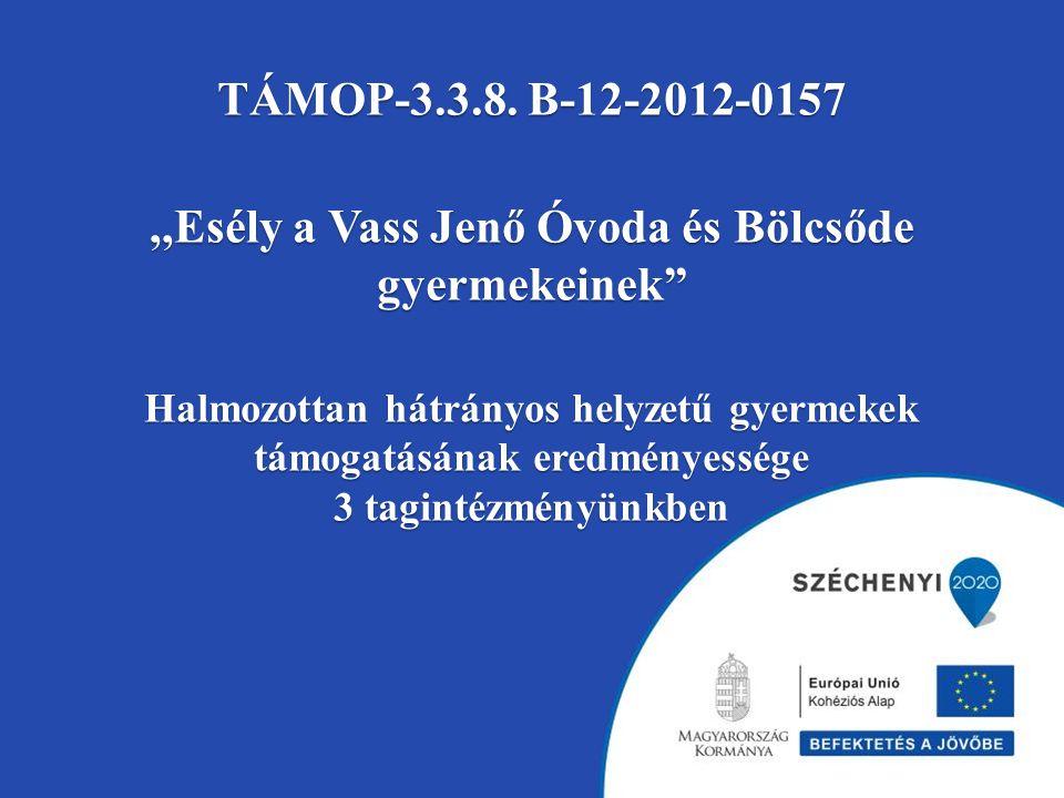 TÁMOP-3.3.8.