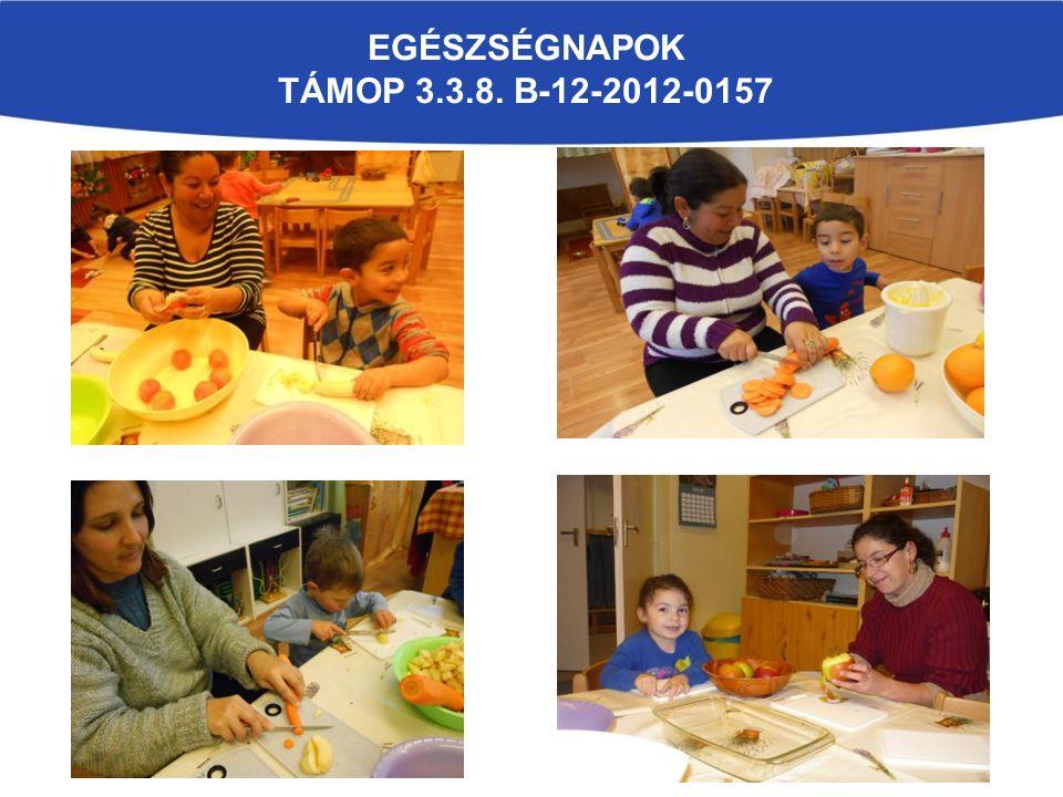 EGÉSZSÉGNAPOK TÁMOP 3.3.8. B-12-2012-0157