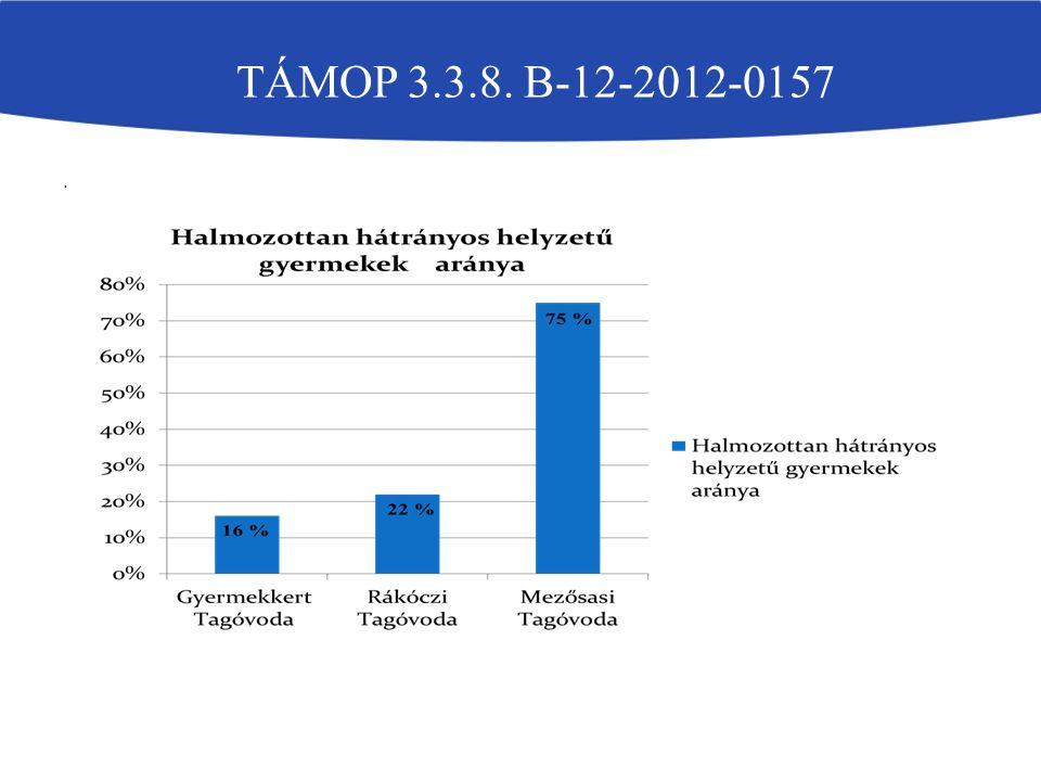 . TÁMOP 3.3.8. B-12-2012-0157