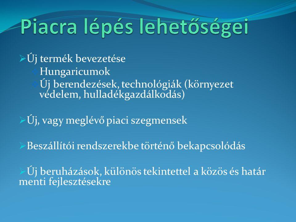 Új termék bevezetése  Hungaricumok  Új berendezések, technológiák (környezet védelem, hulladékgazdálkodás)  Új, vagy meglévő piaci szegmensek  Beszállítói rendszerekbe történő bekapcsolódás  Új beruházások, különös tekintettel a közös és határ menti fejlesztésekre