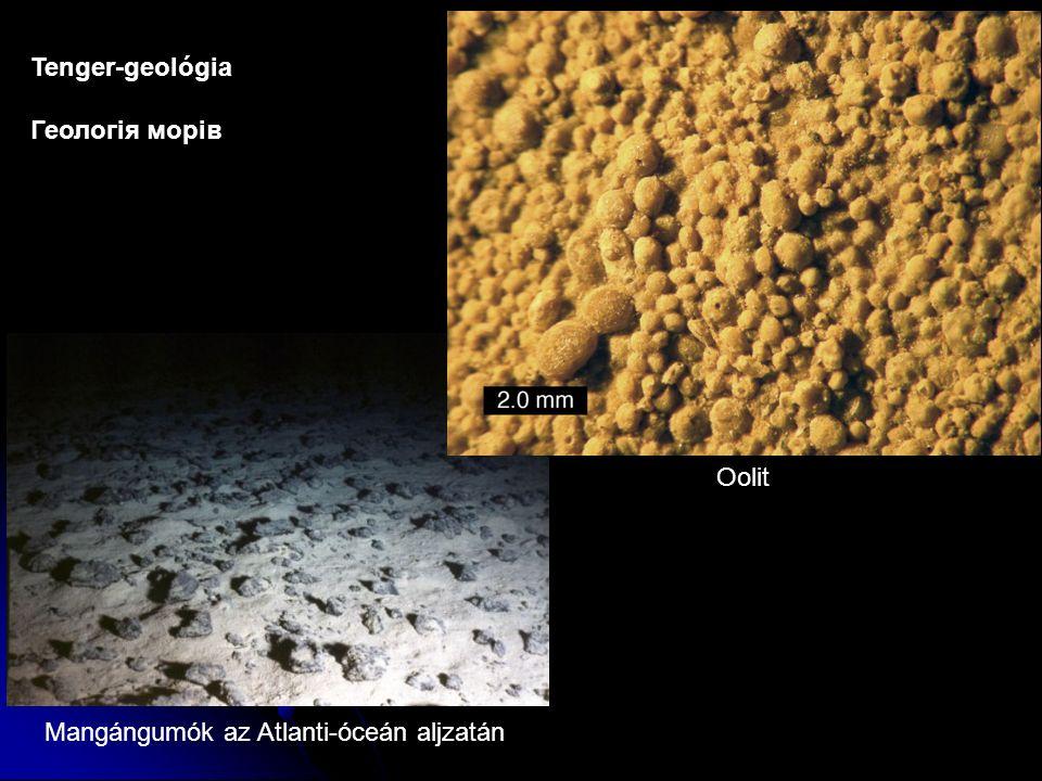 Tenger-geológia Геологія морів Mangángumók az Atlanti-óceán aljzatán Oolit