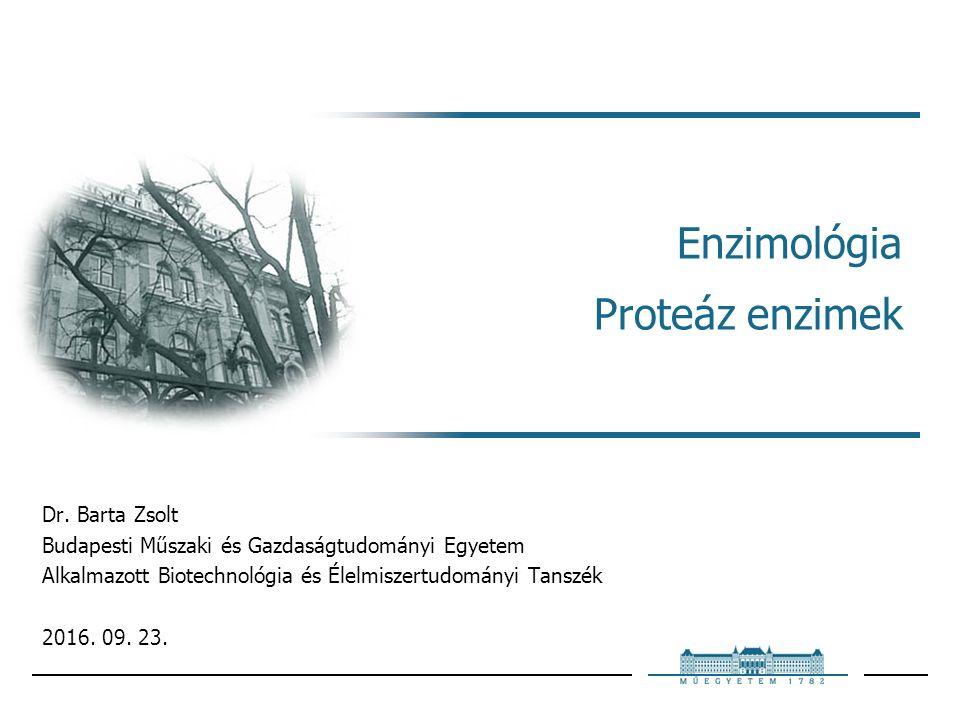 Enzimológia Proteáz enzimek Dr.