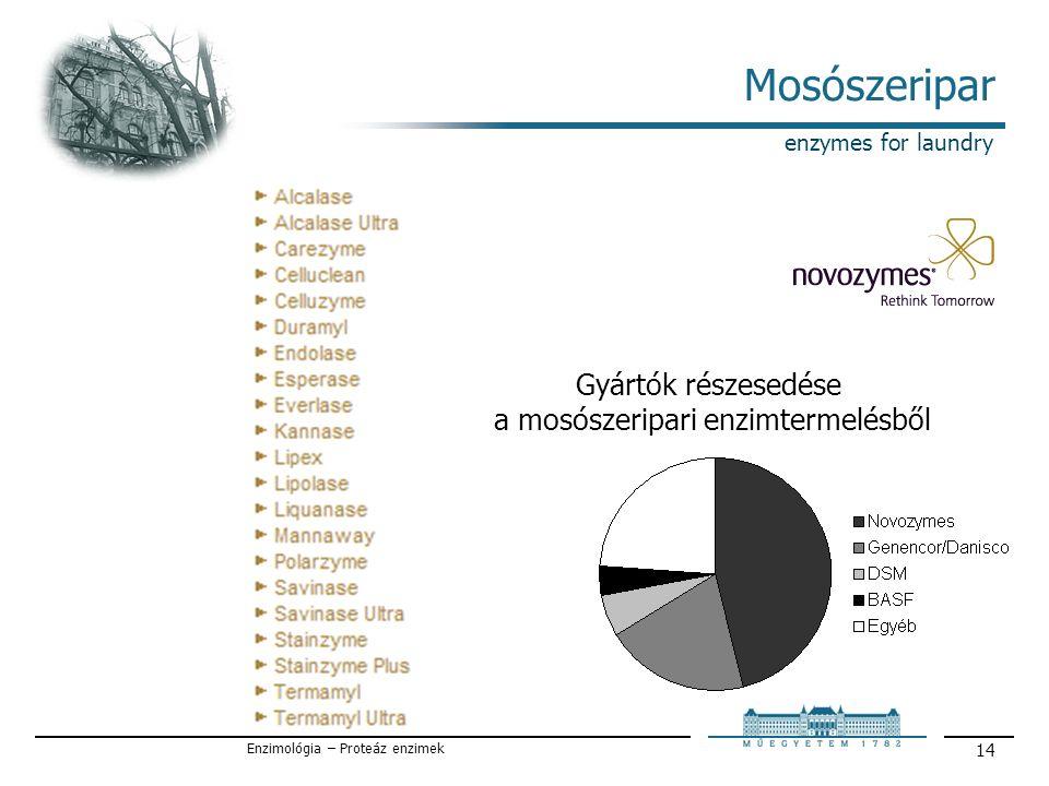 Enzimológia – Proteáz enzimek 14 Mosószeripar enzymes for laundry Gyártók részesedése a mosószeripari enzimtermelésből