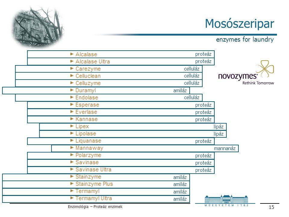 Enzimológia – Proteáz enzimek 15 Mosószeripar enzymes for laundry proteáz celluláz amiláz proteáz lipáz mannanáz proteáz amiláz celluláz