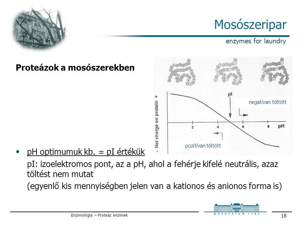 Enzimológia – Proteáz enzimek 18 Mosószeripar enzymes for laundry Proteázok a mosószerekben  pH optimumuk kb.