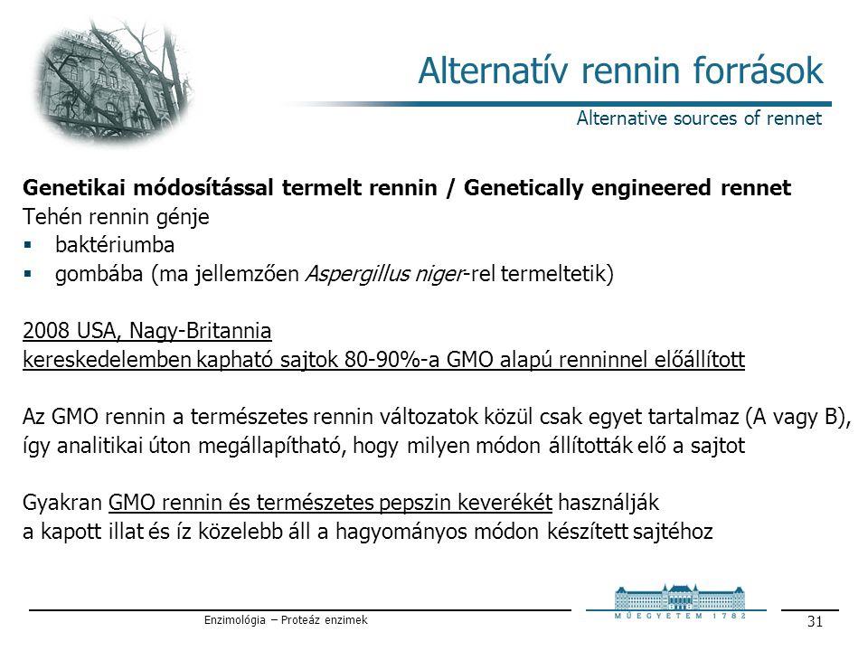 Enzimológia – Proteáz enzimek 31 Alternatív rennin források Alternative sources of rennet Genetikai módosítással termelt rennin / Genetically engineered rennet Tehén rennin génje  baktériumba  gombába (ma jellemzően Aspergillus niger-rel termeltetik) 2008 USA, Nagy-Britannia kereskedelemben kapható sajtok 80-90%-a GMO alapú renninnel előállított Az GMO rennin a természetes rennin változatok közül csak egyet tartalmaz (A vagy B), így analitikai úton megállapítható, hogy milyen módon állították elő a sajtot Gyakran GMO rennin és természetes pepszin keverékét használják a kapott illat és íz közelebb áll a hagyományos módon készített sajtéhoz