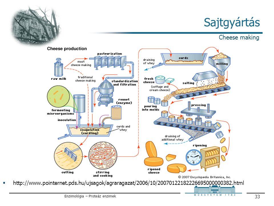 Enzimológia – Proteáz enzimek 33 Sajtgyártás Cheese making  http://www.pointernet.pds.hu/ujsagok/agraragazat/2006/10/20070122182226695000000382.html
