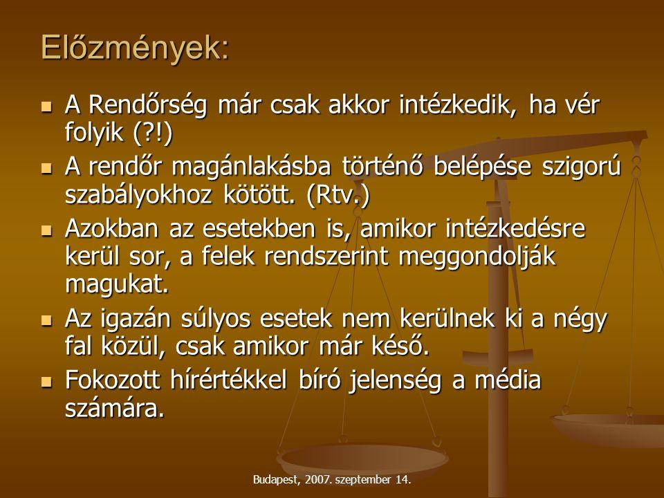 Budapest, 2007.szeptember 14. Mit értünk családon belüli erőszak alatt.