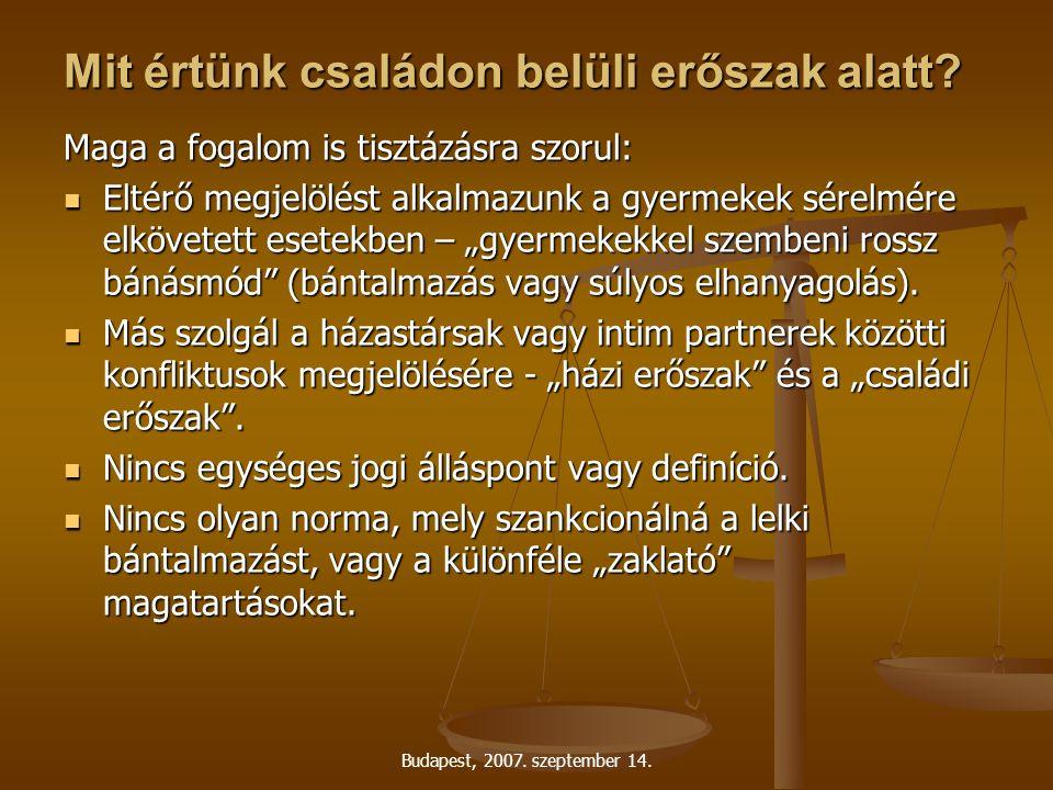 Budapest, 2007. szeptember 14. Mit értünk családon belüli erőszak alatt.