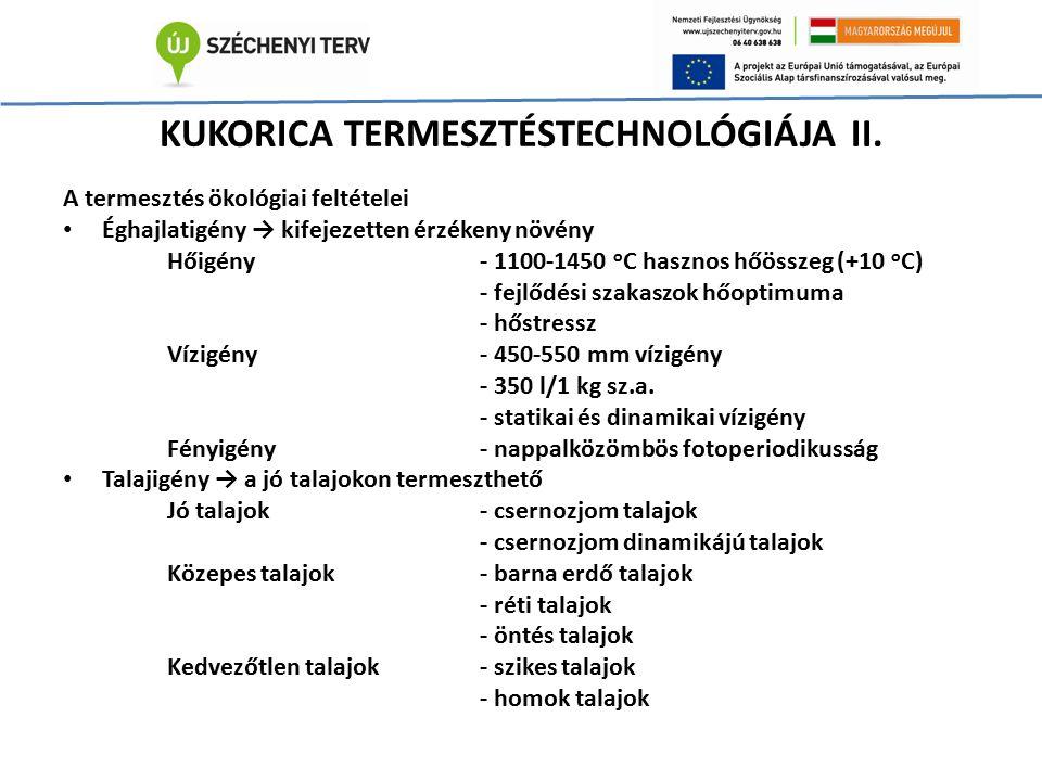KUKORICA TERMESZTÉSTECHNOLÓGIÁJA II. A termesztés ökológiai feltételei Éghajlatigény → kifejezetten érzékeny növény Hőigény- 1100-1450 o C hasznos hőö