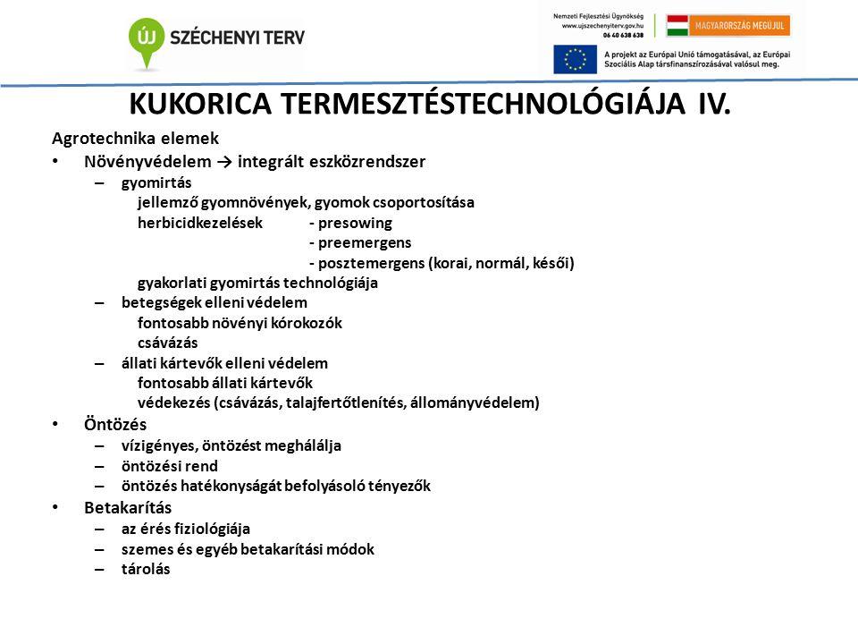 KUKORICA TERMESZTÉSTECHNOLÓGIÁJA IV. Agrotechnika elemek Növényvédelem → integrált eszközrendszer – gyomirtás jellemző gyomnövények, gyomok csoportosí