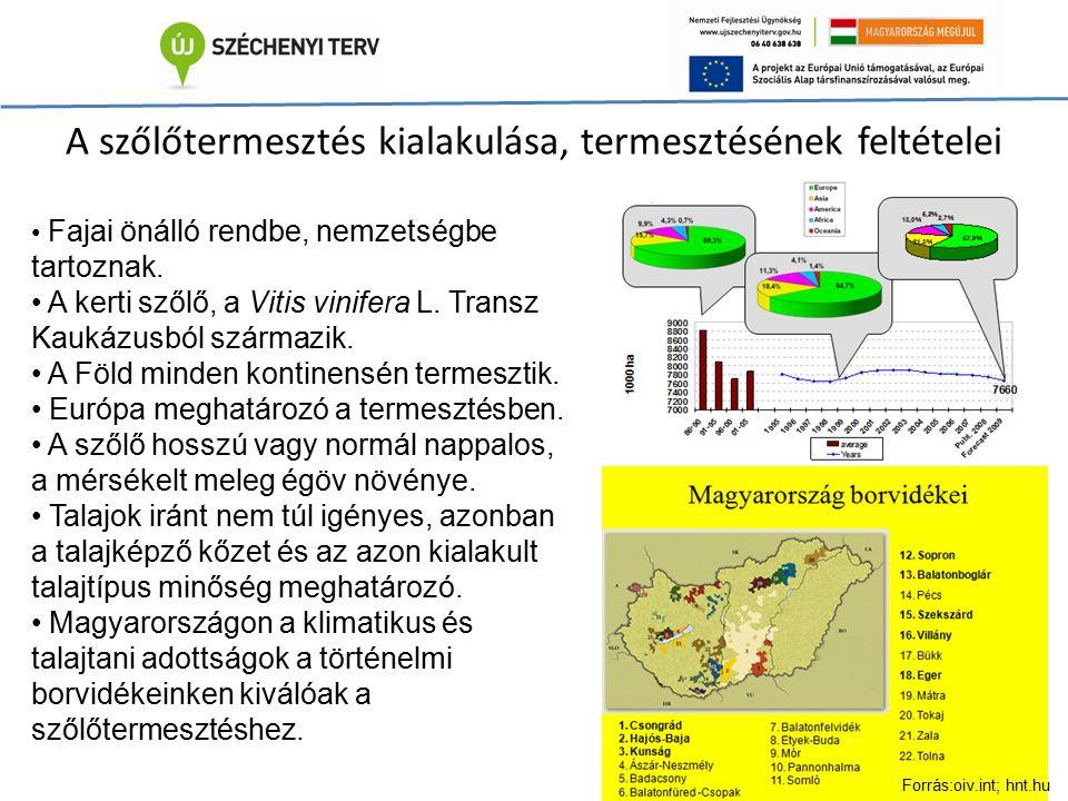 A szőlőtermesztés kialakulása, termesztésének feltételei Fajai önálló rendbe, nemzetségbe tartoznak. A kerti szőlő, a Vitis vinifera L. Transz Kaukázu
